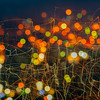 color image of texture and design color which can be used for background and creative space.