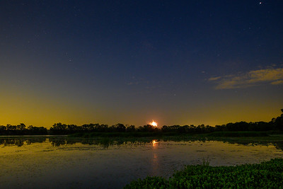 4th of July - Brazos Bend State Park