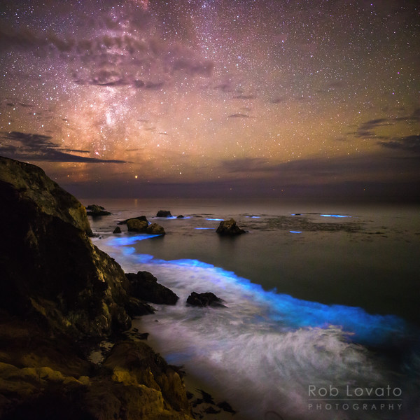 Rocky Creek Bioluminescence, CA