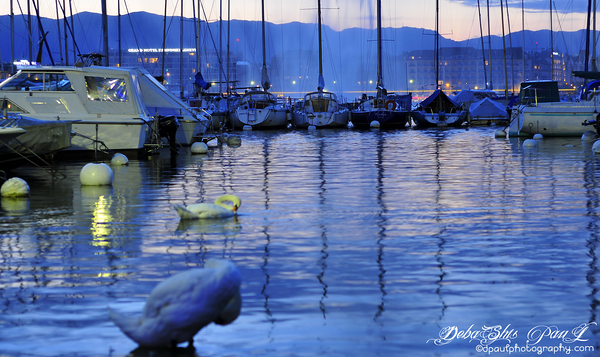 Lake Geneva during Sunset - Switzerland