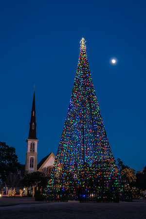 Nighttime at Marion Square Christmas Tree and Citadel Church
