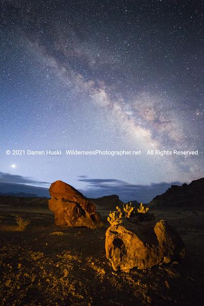 Desert Floor and Night Sky