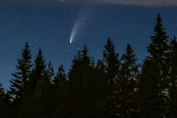 Neowise Comet Falls from the sky.