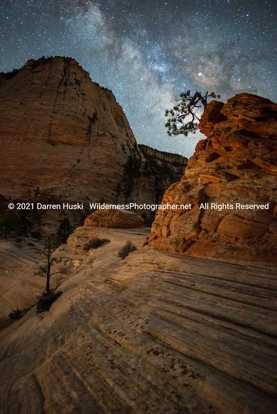 Huski_Desert Southwest_2017_03_30_00565-47.jpg