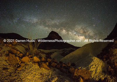 Desert Night View