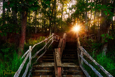 Sunrise up the Steps
