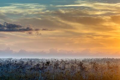 Sunrise in the Everglades 3