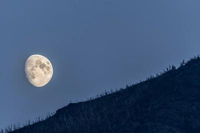 Moonlit Mountainside