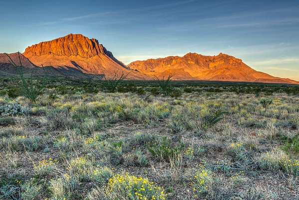 Sunrise at Big Bend