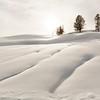 Winter Beauty in Yellowstone