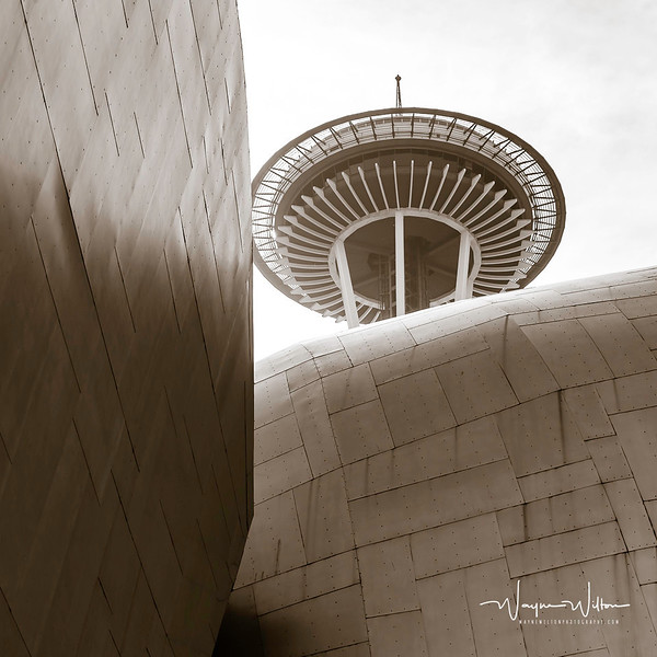 Space Needle and Seattle Museum of Pop Culture