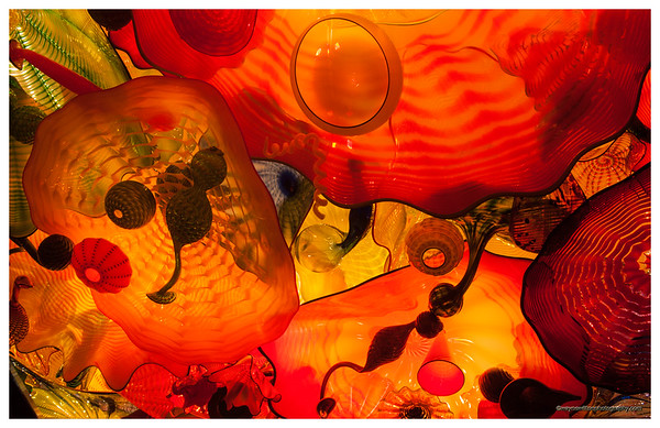 The Dale Chihuly Gardens in Seattle