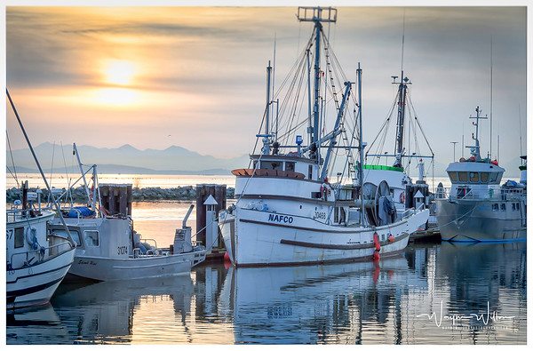Steveston Harbour # 1