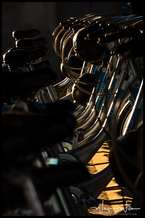 The Row of Bicycles