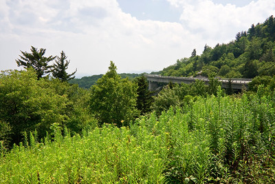 Linn Cove Viaduct in Summertime