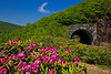 Blue Ridge Parkway Tunnel