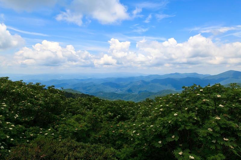 North Carolina Mountain in Summer