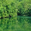 Reflections of Green, Nantahala River, North Carolina
