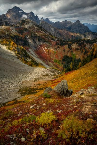 Autumn Cascading Meadows