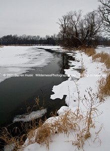 The Trempealeau River flows through the winter marshes of western Wisconsin.