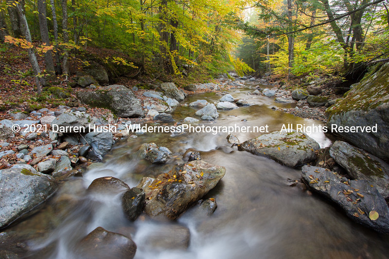 Autumn stream in Vermont