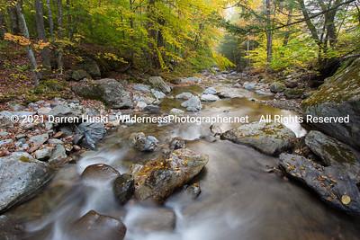Autumn stream in Vermont