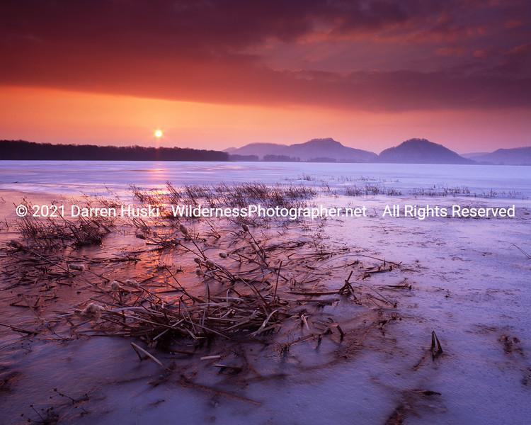 The frozen marsh on a cold winters dawn-Trempealeau NWR, Wisconsin.