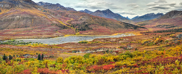 Fall colours, North Klondike Valley, Tombstone Territorial Park