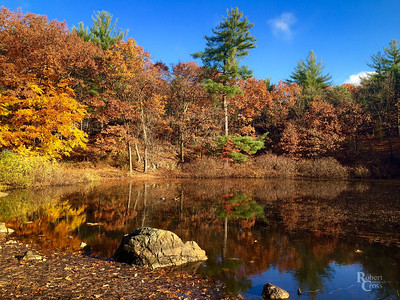 Autumn Has Come to Pine Banks Pond