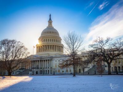 Sunlight in a Washington Winter