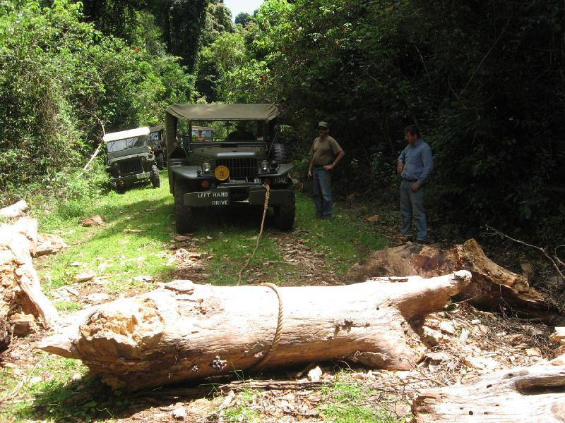 Pulling the broken trunk with a jeep rope and the WC-52