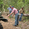 The WC-52 fails to tug this tree aside. Two jeep axes working each end of the tree had to be used so we could get past