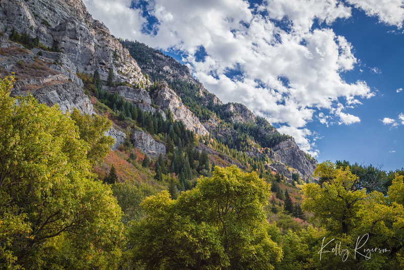 Looking back west in this canyon, the towering sides just hang over you, scattered with trees and little waterfalls.
