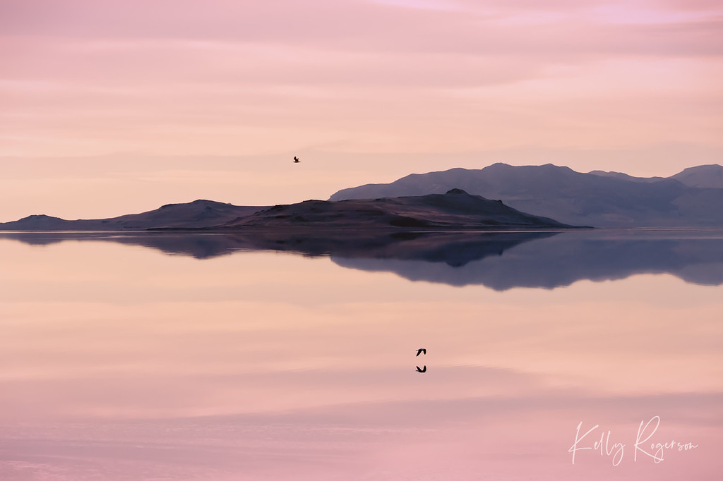 Landscape and Nature Photography by Kelly Rogerson