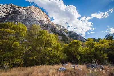 A short distance from Bridal Veil Falls, this is a beautiful landscape spot right up Provo Canyon, Utah.