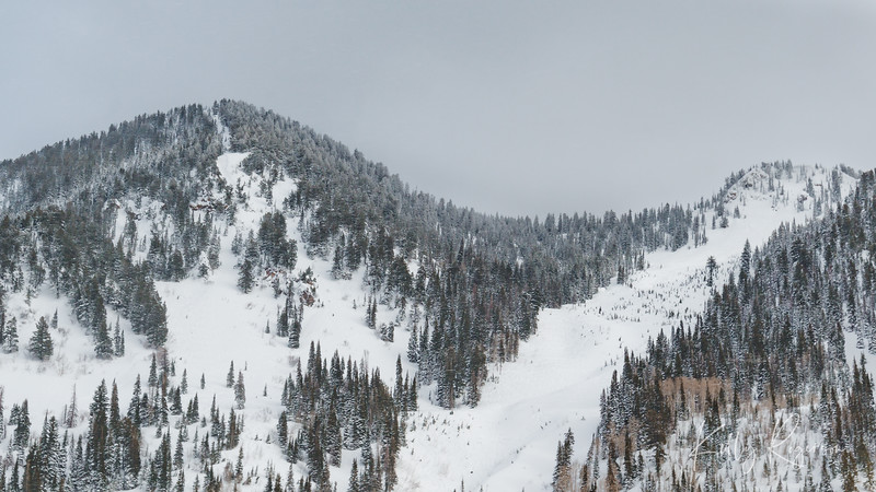 As we drove up the canyon, the sun was out and scattered clouds. The small storm moved in quickly as we drove further up the mountain. The storm settled in with just a light falling of snow.