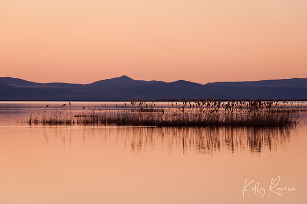 Bear River Bird Refuge - Utah