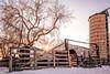 Winter Sun Beyond The Barn