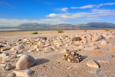 Beach at Great Salt Lake, Utah