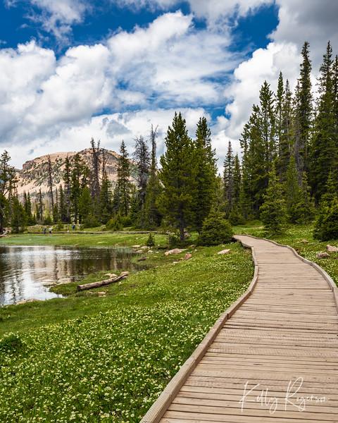 Path Along Mirror Lake