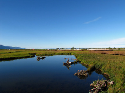 Anchorage Coastal Wildlife Refuge (Potter Marsh), Alaska (1)
