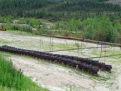 Chicken, Alaska (9)