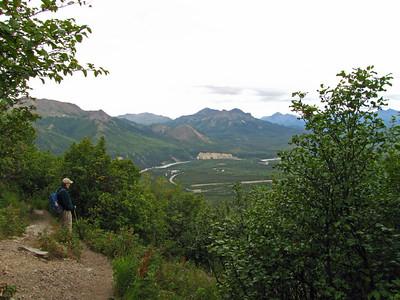 Denali National Park, Alaska (Healy Overlook Trail (2)
