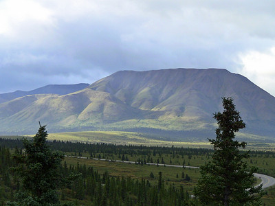 Denali National Park, Alaska (Kantishna Wilderness Experience) (4)