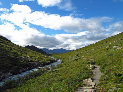 Denali National Park, Alaska  (Savage River Loop Trail)