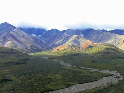 Denali National Park, Alaska (Kantishna Wilderness Experience) (3)