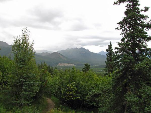 Denali National Park, Alaska (Healy Overlook Trail) (1)