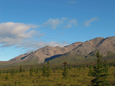 Denali National Park, Alaska (8)