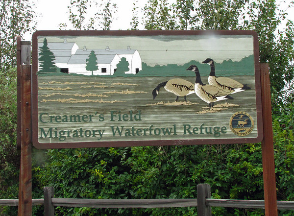 Creamer's Field in Fairbanks, Alaska (1)