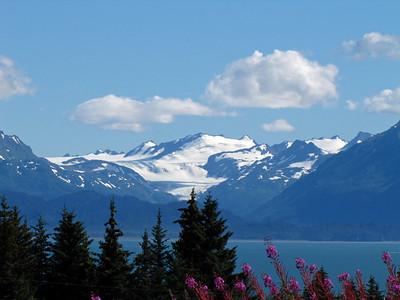 Homer, Alaska (4)